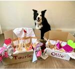 $10 off on New Special Occasion Boxes with Personalised Inclusions $59 Standard / $89 Premium Delivered @ MyTillyTreats