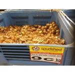 Spudshed - Onions $0.09/kg (Western Australia - Innaloo)