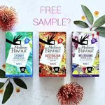 Free Sample of Madame Flavour New Black Tea Blends