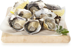 Coles Deli Fresh Pacific Oysters 12 Pack $8 (Was $19) @ Coles