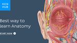$0 Kenhub Anatomy/Physiology Flash Card eBooks (Amazon Kindle + iTunes)