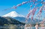 Tokyo, Japan Flying Qantas Return ex Brisbane $599, Adelaide $619, Canberra $620 @ IWTF