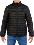 North Face Men's Thermoball Eco Jacket $89.97 Delivered @ Costco Online (Membership Required)