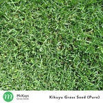 Additional 10% off Already Reduced Price on 1kg Kikuyu Seeds @ Mckays Grass Seeds on eBay. Now $68.85 Shipped
