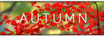 Autumn Steam Game - Free after Completing Gleam Steps from Greenlight