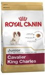 Royal Canin Cavalier King Charles/Schnauzer Breed Junior Puppy Dry Dog Food 1.5kg $11.99 (Save $20) @ My Pet Warehouse