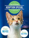 [VIC] Adopt a Kitten for $97.50, Adopt a Cat for Free @ RSPCA Victoria