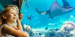 [QLD] Sea World Gold Coast Stay for 4 inc Breakfast + Theme Parks Entry $199 (85% off) via Travelzoo