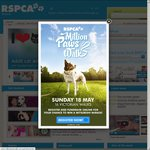 FREE Adult Cat Adoption at RSPCA Victoria