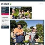 Free Trees for Sydney Residents [Saturday 1 April 2017 at Sydney Park]