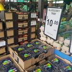 [VIC] Blueberries 12x125g Punnets $10 ($6.65/kg) @ Big Watermelon Bushy Park
