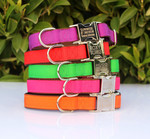 Personalised Pet Collar - Metal Buckle, Nylon $9.95 Free Shipping for 24hrs @ Custom Pet Collars