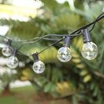 8m/25ft Waterproof Indoor/Outdoor String Bulb Lights with 25 Globes $29 (Was $40) + Post (Free w Prime/$49) @ Geekol Amazon AU