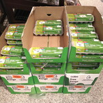 [NSW] Free Range Eggs, Dozen 600g $1.64 (Was $4.10), BB 9/12 @ Coles Warringah Mall