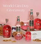 Win Gin & Tonic, Wine Glasses, Dried Fruit or 1 of 3 Gin, Elderflower Fevertree, Glasses from BABY Pink Gin