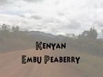 1kg Single Origin Kenya Peaberry Fresh Roasted Coffee $26.95 FREE Shipping @ Safari Roast