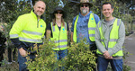 [Sydney] Free Tree Giveaway for Inner West Council Residents 29 July 10am-1pm @ Rozelle Bay Community Nursery