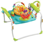 Fisher-Price First Steps Jumperoo $41.60 from Target Online and Free Pickup