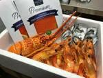 [VIC] Seafood Platter - (Includes Lobster, King Prawns, Oysters and More) Delivered $99 (within 30km from Melb CBD) @ Pokémart