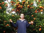 10kg Orange Box Fresh from The Orchard Now $21 Save $17 [Excl. TAS/NT/WA] @ Farmhouse Direct