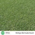 1kg 100% Pure Bermuda Couch Grass Seed (Covers 100m²) Was $65 Now $52.25 Delivered* @ Mckays Grass Seeds eBay