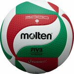 20% off All Indoor and Beach Volleyballs (Free Delivery) @ Molten Australia