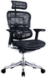 Ergohuman V2 Plus Deluxe Full Mesh Office Chair (Black & Grey) $599 + Delivery @ Temple & Webster