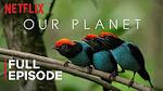 Netflix: 10 Free Education Documentaries Watchable on YouTube