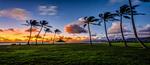 Hawaii 72 Hour Flash Sale - Honolulu, Hawaii Return from Sydney $714 on Hawaiian Airlines @ Skiddoo