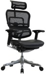 Ergohuman Leather Seat & Mesh Back V2 Plus Deluxe Chair $499 (RRP $649) Shipping to Sydney ~ $42 @ Temple & Webster