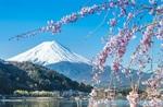 QANTAS: Tokyo Return from Sydney $632, Melbourne $644, Brisbane $657, Adelaide $663, Canberra $698 @ IWTF