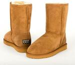 50% off Urban Trail UGG Boots $99.50 + Delivery @ BNE Marketplace