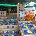 [VIC] Blueberries 12x125g Punnets $20 ($13.33/kg), Raspberries 4x125g $10 ($20/kg) @ Big Watermelon Bushy Park